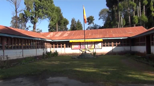 Chhukha District Court-Implicated immigration officials plea for alibi
