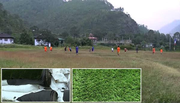 gyalpoizhing-to-get-artificial-turf