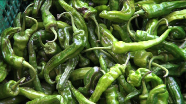 61485ead6 The price of local green chillies from Trashi Yangtse will now be regulated  by the Ministry of Agriculture and Forests (MoAF).