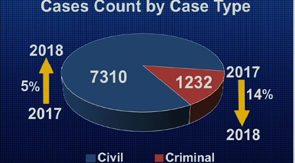 2018 saw decrease in criminal cases but increase in civil ...